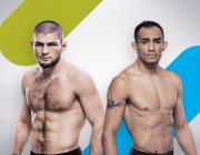Ҳушдори Ҳабиб ба Тони: Ҳушёр бош UFC 249 наздик аст!