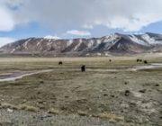 Китайские СМИ претендуют на земли Таджикистана